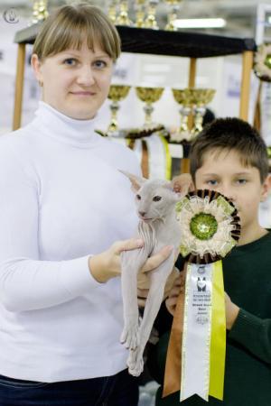 cats-show-wcf-19-10-13-spb-www coonplanet ru-110